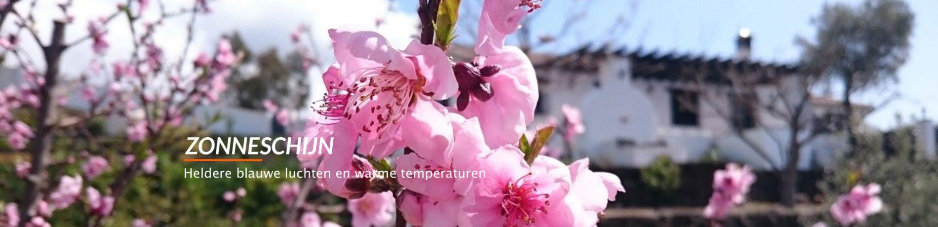 ZONNESCHIJN Heldere blauwe luchten en warme temperaturen